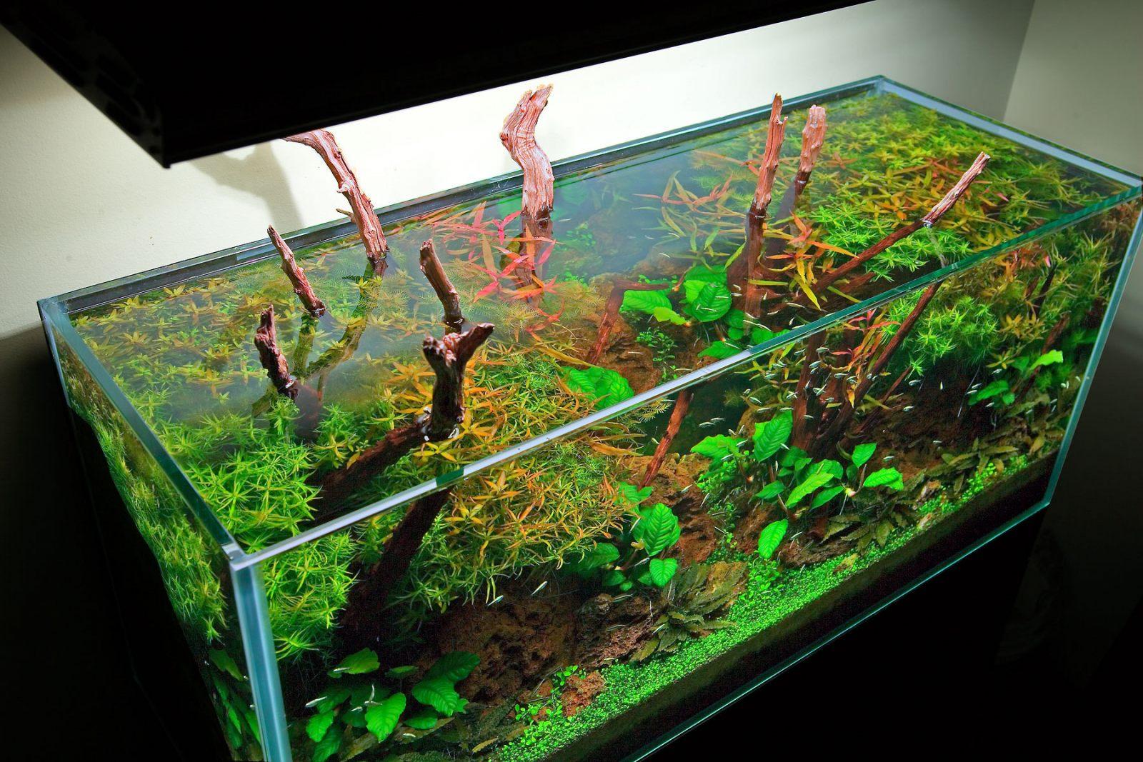Грунт для аквариума своими руками